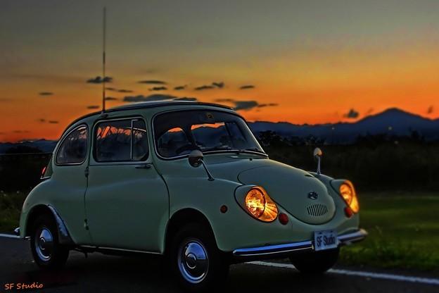写真: 夕焼てんとう虫