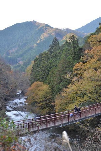 秋川と橋 [東京都あきる野市]