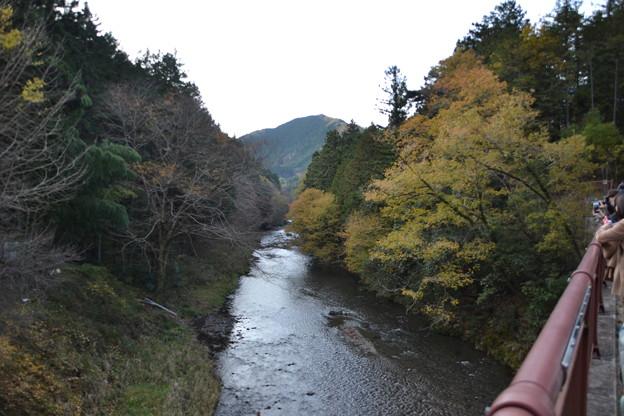 石舟橋から見た秋川 [東京都あきる野市]