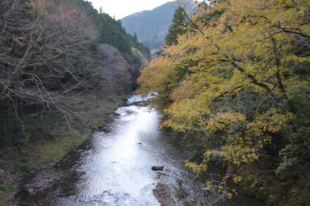 秋の秋川 [東京都あきる野市]