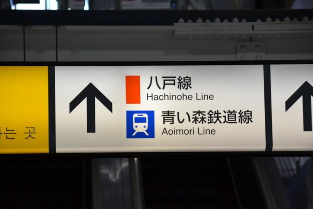 案内表示 [JR東北新幹線 八戸駅]
