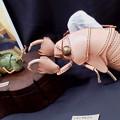 写真: 池袋に観劇に行ったので、ジュンク堂書店の七階に寄って革製の生き物展示も観てきました。コレは蝉の脱け殻ティッシュ入れw。
