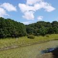 佐紀石塚山(成務天皇陵)