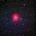 写真: NGC2174 モンキーフェイス星雲