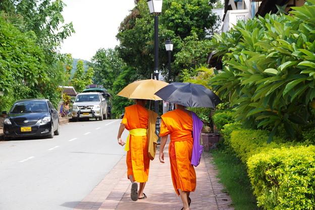 Photos: 仏都の日常