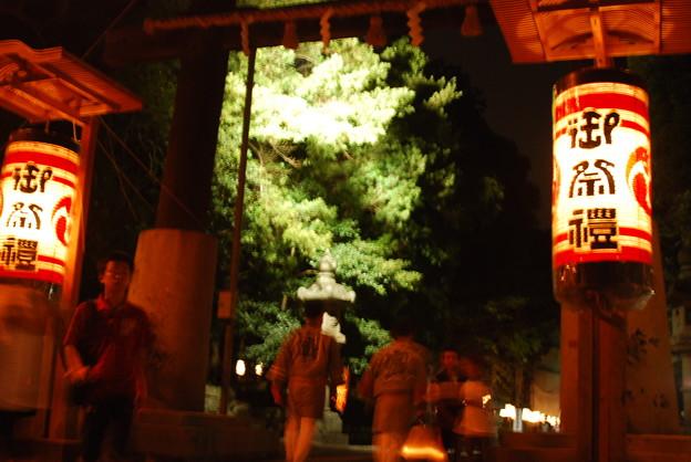 Photos: 府八幡宮2014 006