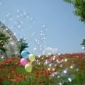 Photos: IMGP3830_0527
