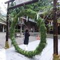 Photos: 茅の輪