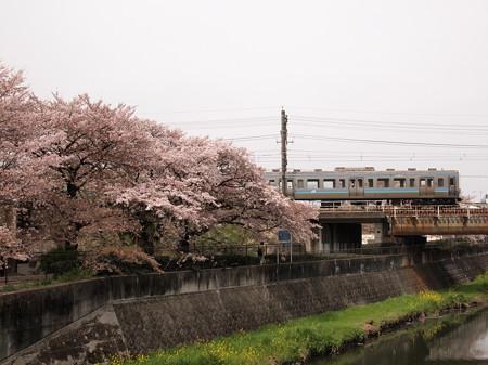 211系普通 中央本線日野~立川