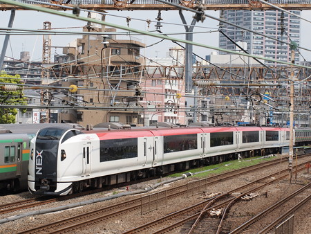 E259系特急成田エクスプレス 横須賀線武蔵小杉~横浜