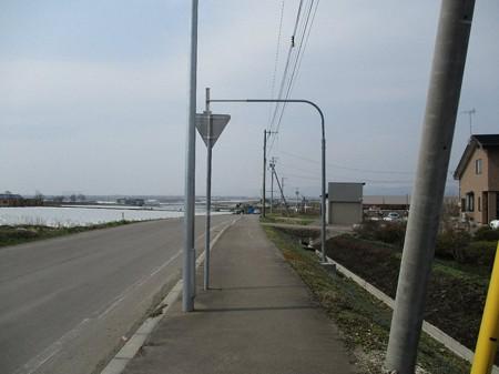 16_nakayama_11