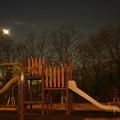 写真: 夜の公園