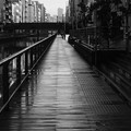 写真: 雨上がり