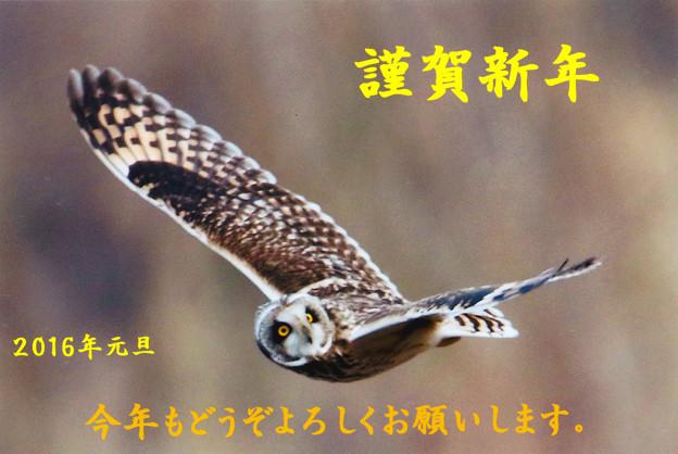 新年のご挨拶(1)