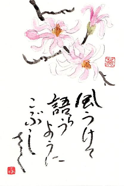 早春 by ふうさん