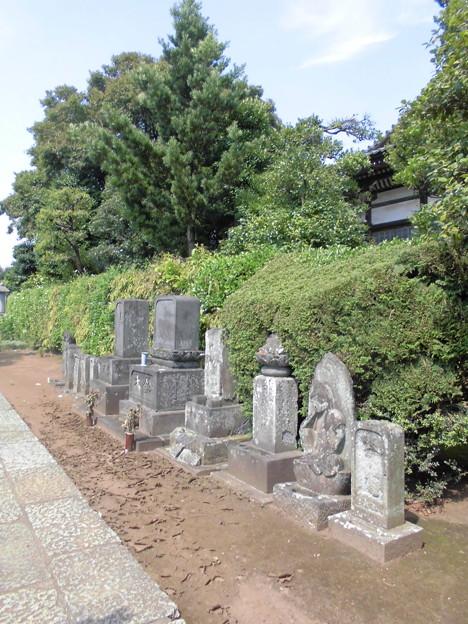 線松原駅~京王線桜上水駅界隈:密蔵院-08墓地a
