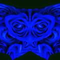 写真: 青い薔薇-05