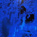 写真: 夜桜-02a