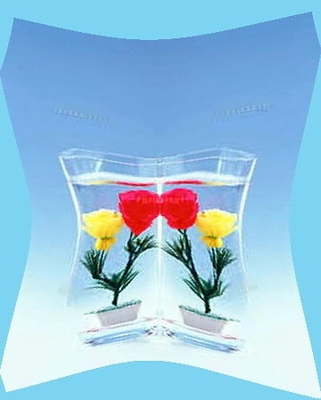 水中花-01b