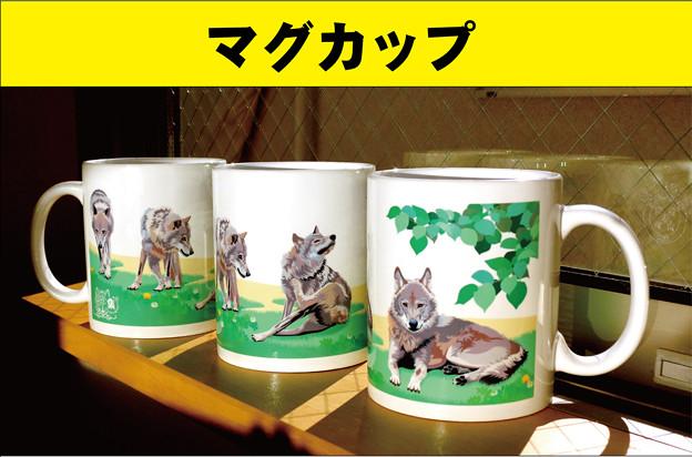 Photos: マグカップ