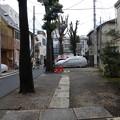 Photos: 天祖神社の参道