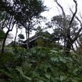 旧朝倉家住宅