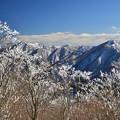 雪の華さく西丹沢