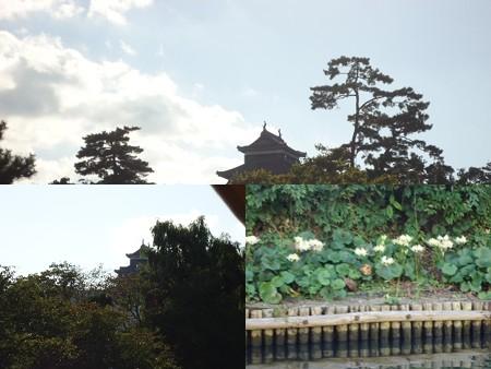 舟から見た松江城