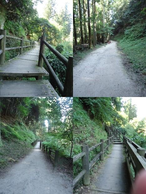 石見銀山遊歩道