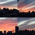 写真: 日ノ出