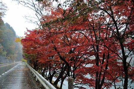 DSC_3041 中山七里の紅葉その1