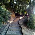 Photos: SBSH0104a 潮海山その4