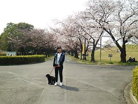 庄内緑地公園2