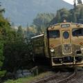 或る列車を見送る
