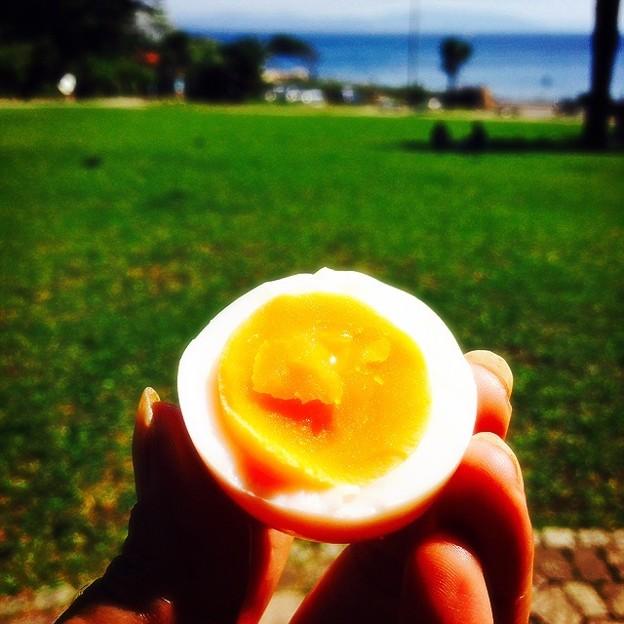 ねっとり卵の黄身
