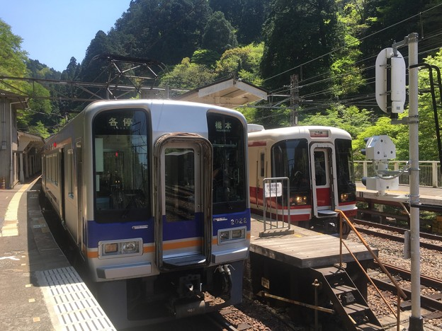 Photos: 2000系ズームカー+特急こうや号
