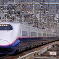 Photos: 東北新幹線 やまびこ つばさ 東京行き