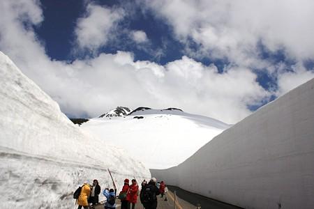 雪壁 立山雪の大谷
