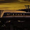 Photos: 羽田行き