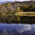 秋景大沢沼