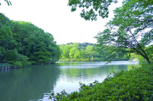 八丁湖の風景2