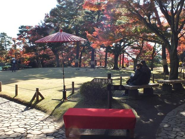 殿ヶ谷戸庭園7