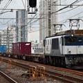Photos: EF641003牽引1091レ
