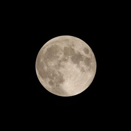 やっと満月です♪
