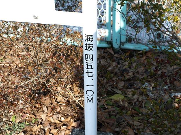写真: 岩島駅海抜表示