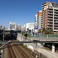 写真: 天満宮の橋