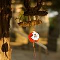 Photos: 葛西神社 割れ風鈴