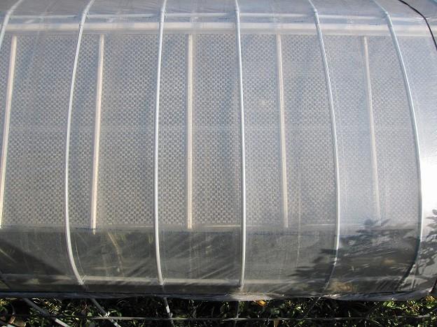 Photos: ビニール張った温室を上から見た
