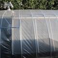 Photos: 温室ビニール張り煙突を出す