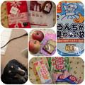 Photos: まるママ&berryちゃんから